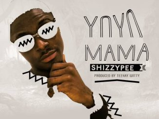 Download MUSIC Shizzypee - Yo-Yo Mama (Prod. By TeekayWitty)