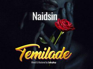 Download MUSIC: Naidsin – Temilade