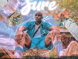 Music: Tibiebi - Sure