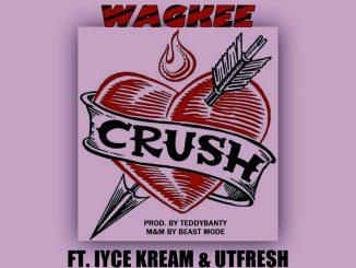 Download Music: Wagkee Ft Iyce Kream x Utfresh - Crush
