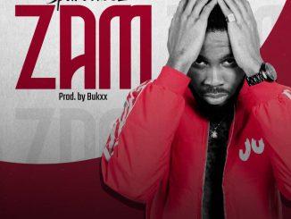 Music: SparoVibez - ZAM