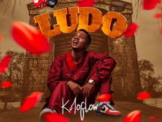 Download Music: Koloflow - Ludo