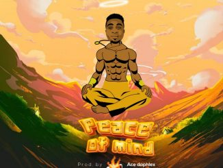 Super Dee - Peace Of Mind
