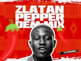 DJ MIX: DJ Kaywise – Pepper Dem (Mix)