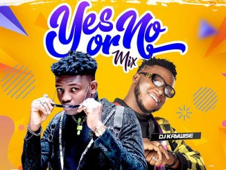 DJ MIX: DJ Kaywise - Yes Or No mix