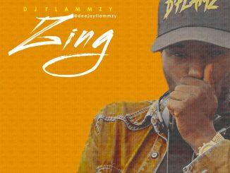 Dj Mix: DeejayFlammzy - The Zing
