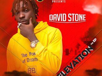 EP: David Stone - Elevation