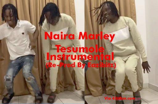 DOWNLOAD MP3: Naira Marley - Tesumole - GentleLoaded